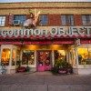 JunkerVal Loves Uncommon Objects in Austin Texas!