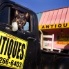OPEN Fridays Saturdays Sundays, Antiques Vintage Fort Worth!