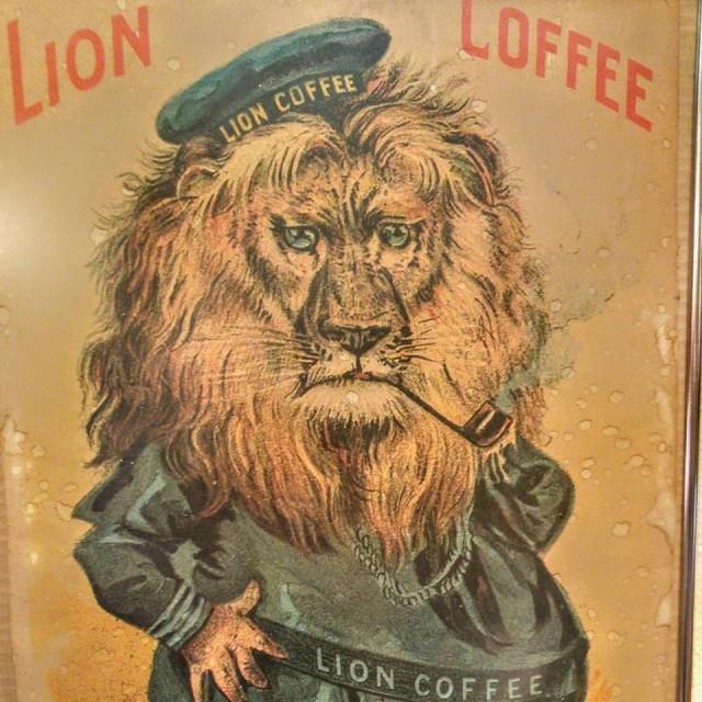 lion cof nov 15