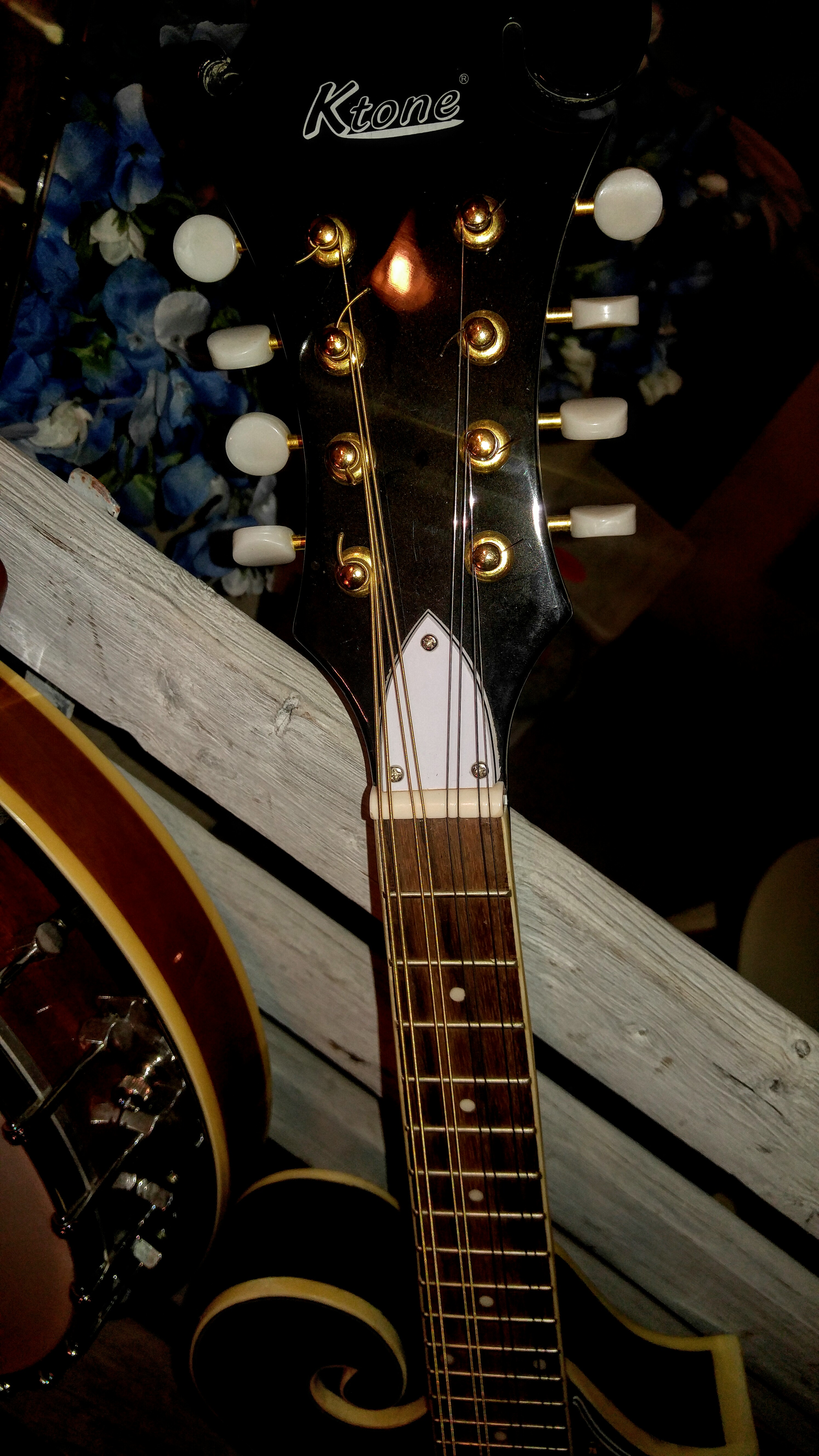 vintage Musical Instruments for Sale, Fort Worth Texas