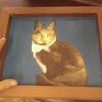 Calico Cat. Painting, Fort Worth Antiques Art